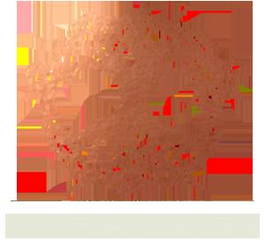 Lavinea Single Vineyard Wines